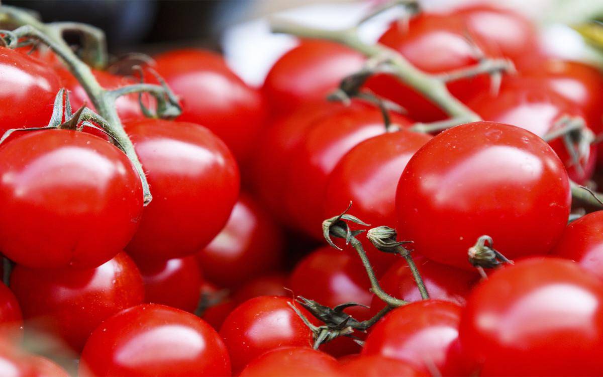 poder del tomate