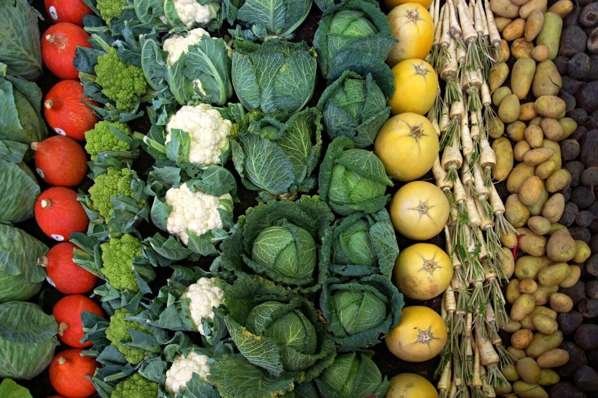 Alimentos antioxidantes. Hortalizas y verduras