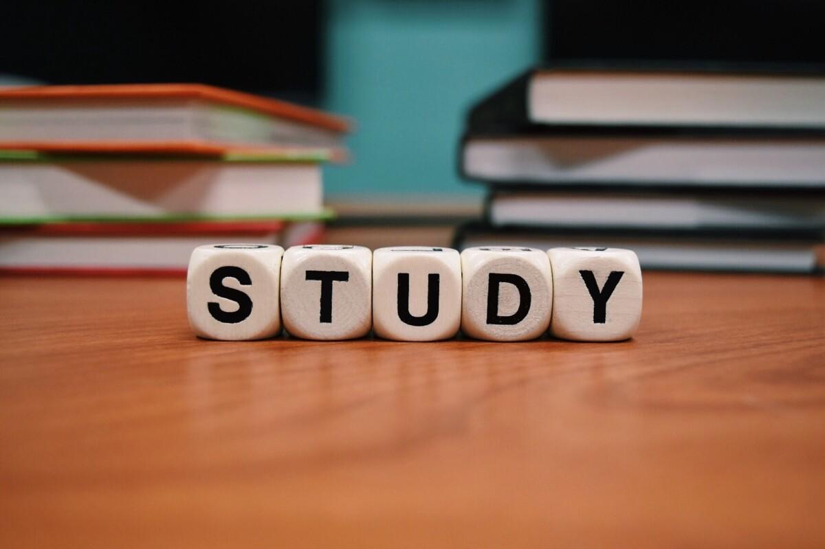 alimentos para estudiar
